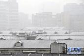 人民时评:南方暴雪映照治理进步