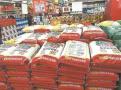 东北大米占据大半市场 江苏本地大米单一、价不高