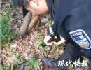 连下几天雨,南京紫金山上冲出来一枚炮弹
