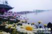 五一旅游大数据:郑州等城成市场的最大客群