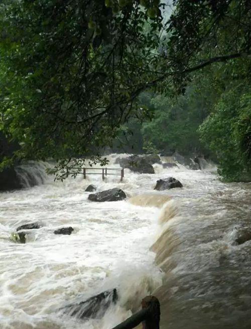 青龙瀑布景区突降大雨 游客被成功转移妥善安顿