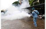 蚊子多了 小心它传播的传染病! 江苏6月报告8例登革热