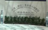 视频|浙江自贸试验区的机遇 打造国际大宗商品贸易先导区
