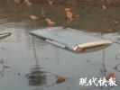 河里有辆车!路过小伙一头扎下去搜救落水者