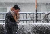 大年初四因降雪影响 河南17段高速实施管制