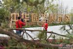 北京世园会正式开园 河北馆园迎首批游客