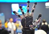 新一代人工智能创新试验区扩围 近十个城市申报争