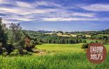 河南淅川:荒山披绿装 家园更靓丽