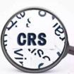 中国版CRS