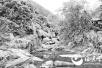 结伴水潭游泳9岁男童溺亡 事发福州鳝溪风景区