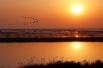 南大港湿地 淳美泽国 旅游盛宴