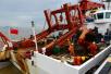 """海洋局:""""向阳红10""""船完成大洋43航次科考任务"""