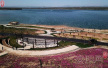河南汤阴县汤河国家湿地公园花卉竞相开放