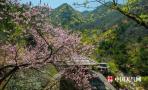 全国气温回升大面积破25℃ 广东广西沿海有暴雨