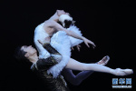 纪念《天鹅湖》中国首演60周年 中央芭蕾舞团倾情演出!
