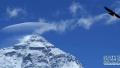 北大登山队成功登顶珠穆朗玛峰 最小队员仅21岁
