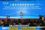 """首届上合组织政党论坛举行:推动构建""""上合命运共同体"""""""