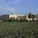 良渚博物院重新开馆