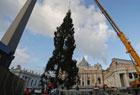梵蒂冈21米圣诞树