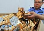 京津冀加强药品、医疗器械和化妆品安全监管区域联动