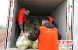 河南郸城一乡长代言卖菜 不到两天时间已售完