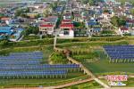 建成三个园,找回一片绿 太康县老冢镇绿色发展有妙招