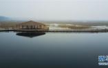 河北石家莊:有水河流全部達到水功能區劃要求